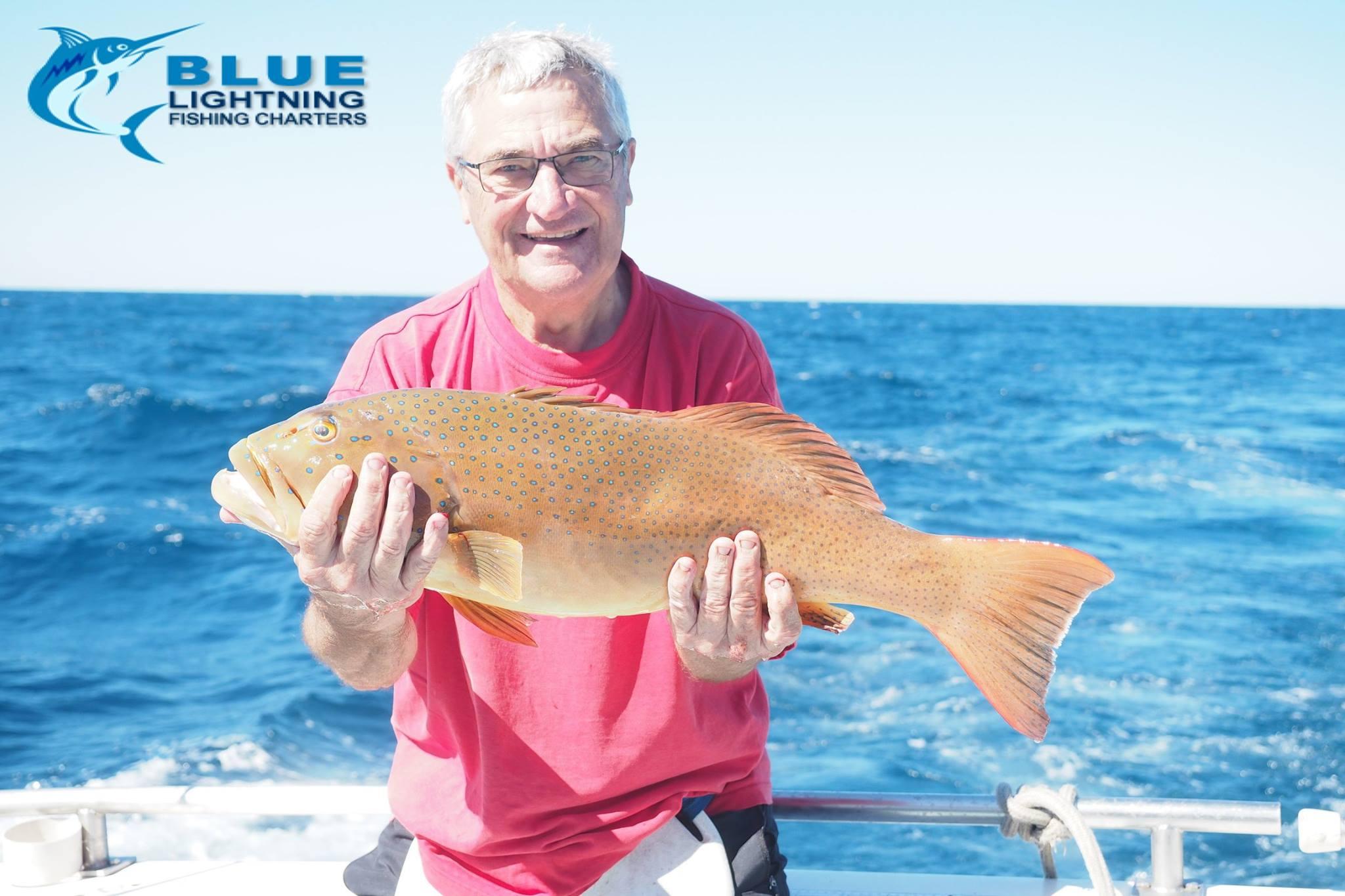 Coral trout wa fishing blue lightning fishing charters for Wa fishing charters