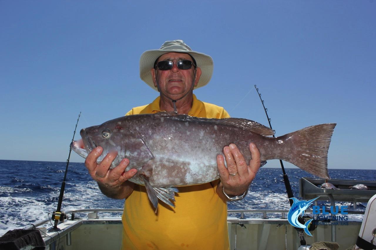 A nice rankin cod wa fishing charter blue lightning for Wa fishing charters