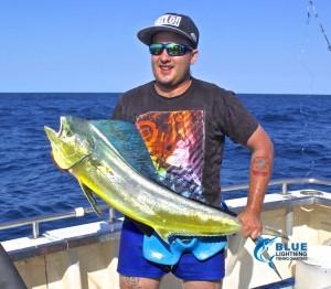 Dolphin Fish Montebello Islands