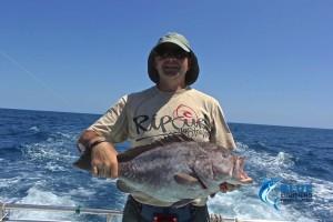 Rankin cod Montebello Islands