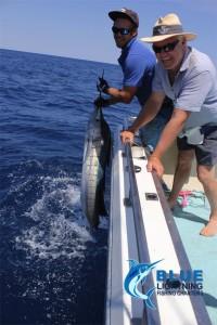 sailfish fishing charter WA