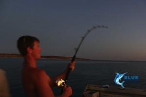 Montebello Islands fishing