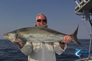 Cobia Montebello Islands fishing charter