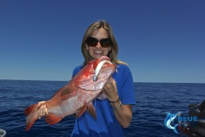 private group charter Coral trout