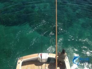 Reef fishing Dampier