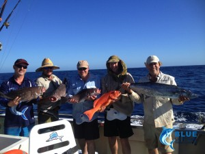 Fishing charter Rankin Cod Coral Trout Cobia