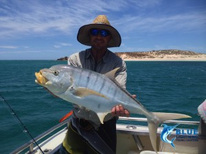 Golden Trevally fishing charter