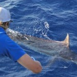 Marlin WA Fishing Charter