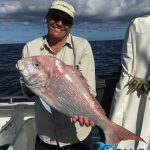 Pink Snapper Abrolhos Islands fishing