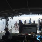 Abrolhos Islands Fishing Blue Lightning Charters