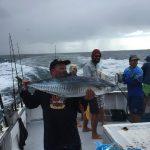 Mackerel Abrolhos Islands fishing