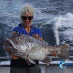Dhu Fish Abrolhos Islands fishing