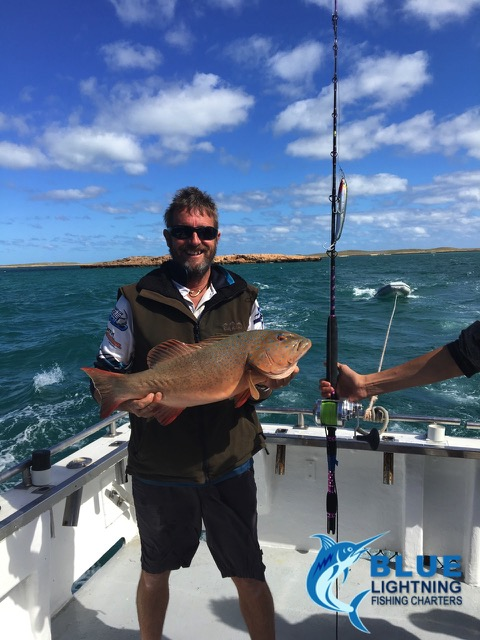 Coral trout montebello islands wa fishing charter blue for Fishing charters washington state