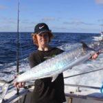 tim spanish mackerel Montebello Islands fishing