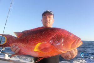 Dave coronation trout Blue Lightning Fishing Charters WA