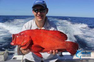 Coral TroutMontebello Islands WA fishing charter