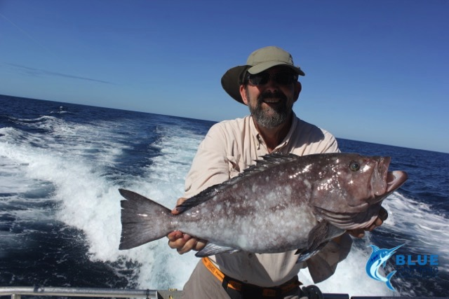 Rankin cod montebello islands wa fishing charter blue for Washington fishing charters