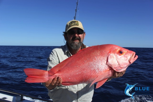 Red emperor montebello islands wa fishing charter blue for Wa fishing charters