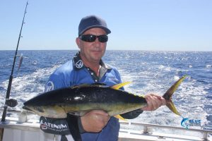 yellowfin Tuna Blue Lightning Charters