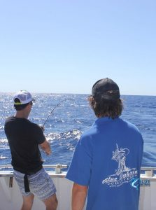 Blue Lightning WA fishing charters