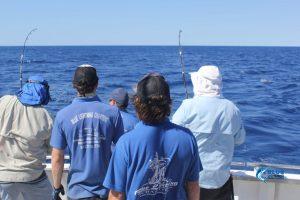 Blue Lightning WAs best fishing