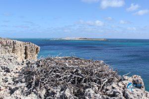 Montebello Islands Scenery Blue Lightning Charters