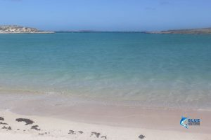Montebello Islands Scenery Blue Lightning Charters scenery