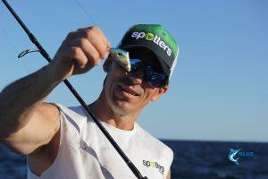 Lure fishing Mackerel