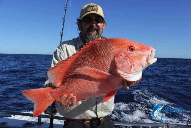 Jim c red emperor montebello islands wa fishing charter for Fishing charters washington state