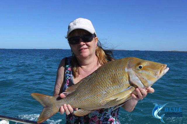 Julie spangled emperor montebello islands wa fishing for Wa fishing charters