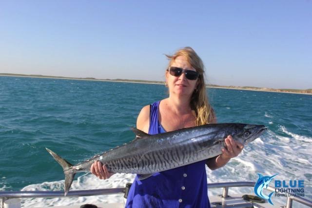 Julie spanish mackerel montebello islands wa fishing for Fishing charters washington state