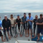 Mackerel and Yellowfin Tuna WA fishing charter