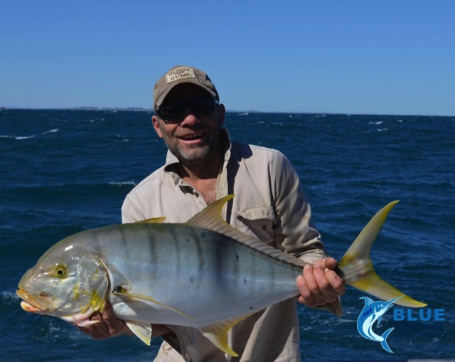 Golden Trevally WA fishing Charter
