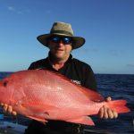 Scarlet Sea Perch Western Australia Fishing Charter Blue Lightning