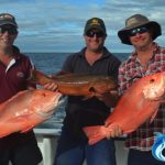 Red Emperor Coral Trout WA best fishing charter