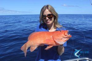 coral Trout Mills Blue Lightning Charters WA fishing charter