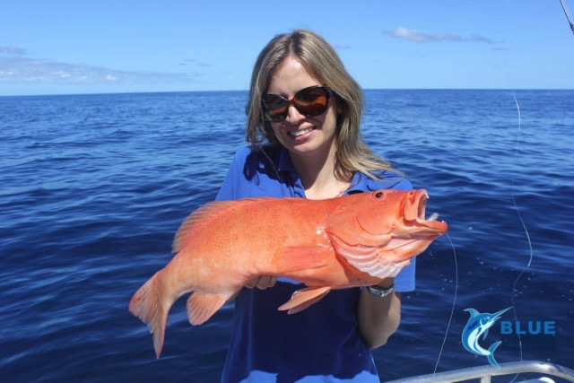 Coral trout mills blue lightning charters wa fishing for Wa fishing charters