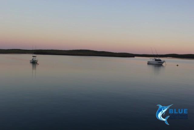 Heartstarter and huntress blue lightning charters fleet for Wa fishing charters