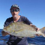spangled emperor Blue Lightning Charters WA fishing charter