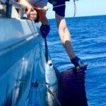 Sailfish Montebello Islands WA fishing charter Blue Lightning Charters