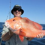 Red Emperor soft plastic Montebello Islands WA Fishing Blue Lightning Charters