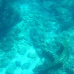 Anchor Tryall Wreckage Montebello Islands underwater Blue Lightning Fishing Charters WA