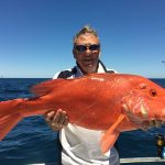 Scarlet Sea Perch Montebello Islands WA fishing charter