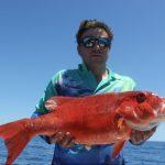 Coral Trout Western Australia fishing blue lightning