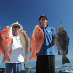Rankin Cod Red Emperor Gold Band Snapper Blue Lightning Charters WA