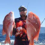 Red Emepror Scarlet Sea Perch Montebello Islands