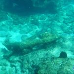 Tryall Wreckage Montebello Islands underwater Blue Lightning Fishing Charters WA