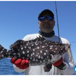 Rankin Cod Blue Lightning Charters WA fishing charter