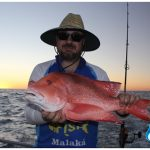 Red Emperor Blue Lightning Charters WA fishing charter