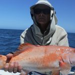 Coral Trout WA Fishing charter Blue Lightning Charters